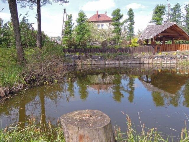 Białystok projekt i urządzenie ogrodu ze stawem