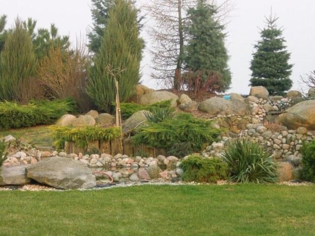 Projekt i wykonanie nasadzeń roślinności w ogrodzie