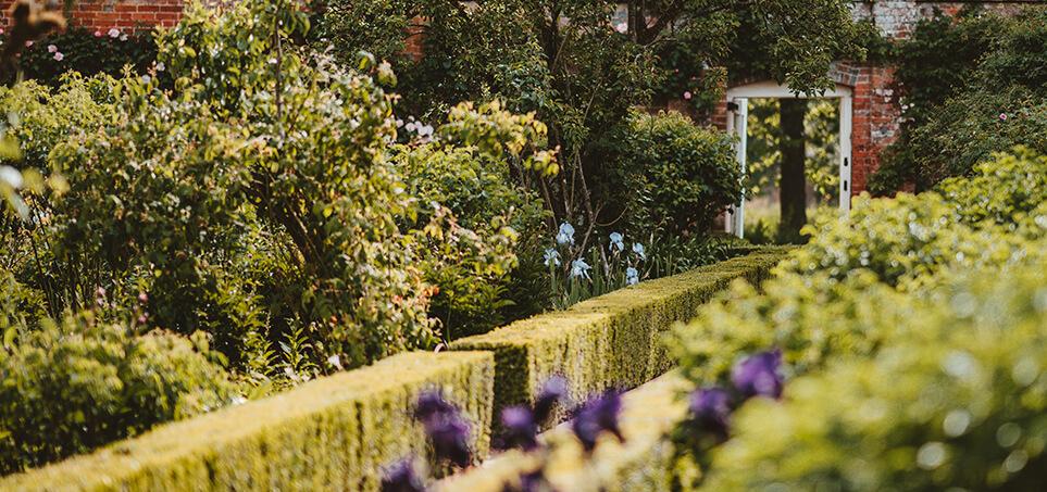 Style ogrodów - ogród angielski
