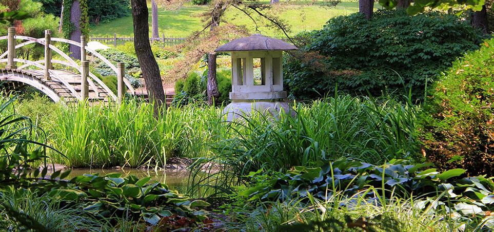 Style ogrodów - ogród japoński